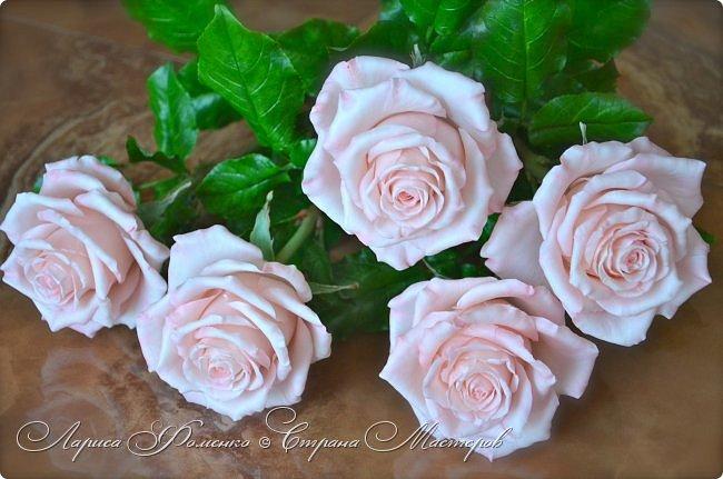 Добрый день всем ! Букет из пяти розовых роз. Сделан на заказ. Фотографий много, при разном освещении. Приятного просмотра. фото 6