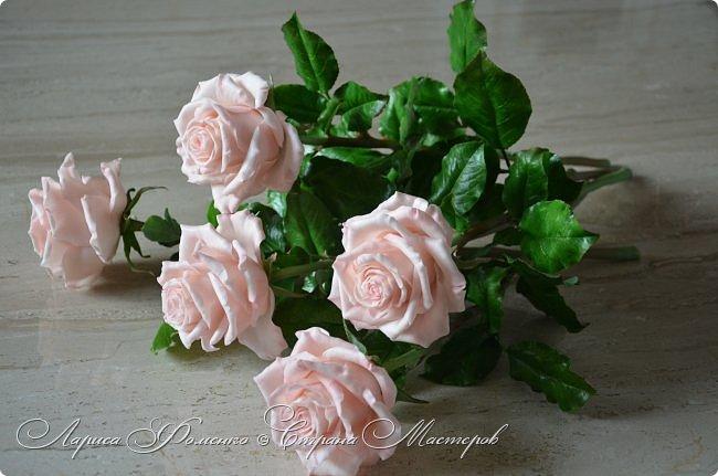 Добрый день всем ! Букет из пяти розовых роз. Сделан на заказ. Фотографий много, при разном освещении. Приятного просмотра. фото 7