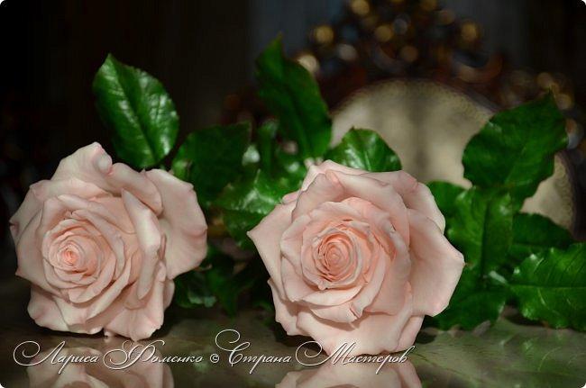 Добрый день всем ! Букет из пяти розовых роз. Сделан на заказ. Фотографий много, при разном освещении. Приятного просмотра. фото 9