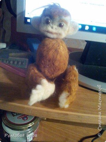 новый друг-обезьянка Персик!