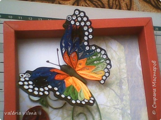 Jardim de borboletas фото 2