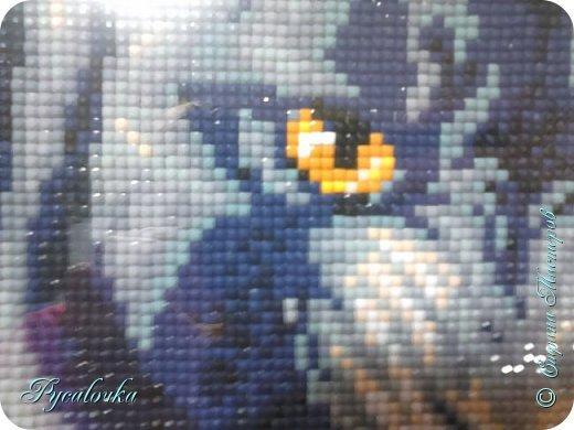 Добрый вечер Страна Мастеров! Я хочу показать вам вот такую пантеру в технике алмазная мозаика. фото 4