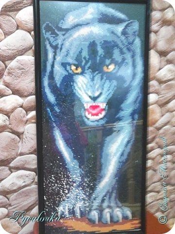 Добрый вечер Страна Мастеров! Я хочу показать вам вот такую пантеру в технике алмазная мозаика. фото 2
