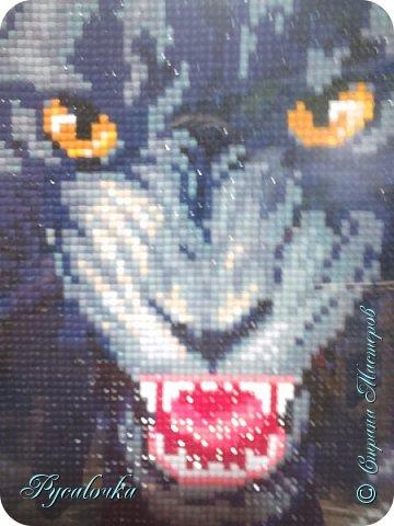 Добрый вечер Страна Мастеров! Я хочу показать вам вот такую пантеру в технике алмазная мозаика. фото 3
