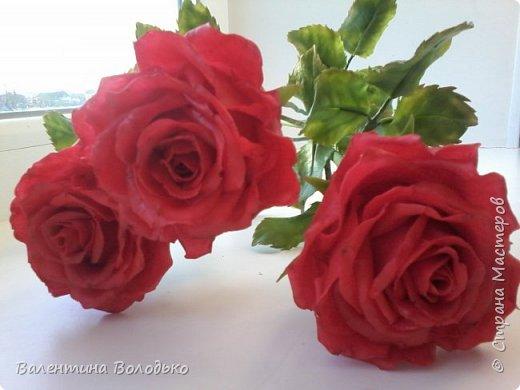 Здравствуйте мастера и мастерицы Страны Мастеров!!!С наступающим Новым годом вас!!Потихоньку осваиваю холодный фарфор.Сегодня у меня красные розы,в тон хозяйке года огненной обезьяны. фото 1