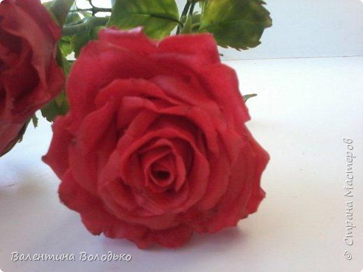 Здравствуйте мастера и мастерицы Страны Мастеров!!!С наступающим Новым годом вас!!Потихоньку осваиваю холодный фарфор.Сегодня у меня красные розы,в тон хозяйке года огненной обезьяны. фото 4