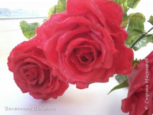 Здравствуйте мастера и мастерицы Страны Мастеров!!!С наступающим Новым годом вас!!Потихоньку осваиваю холодный фарфор.Сегодня у меня красные розы,в тон хозяйке года огненной обезьяны. фото 5