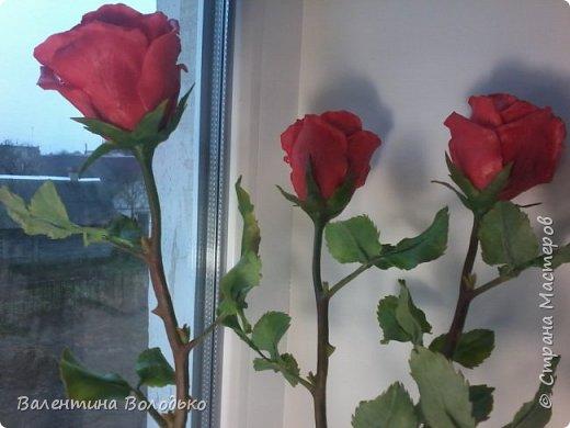 Здравствуйте мастера и мастерицы Страны Мастеров!!!С наступающим Новым годом вас!!Потихоньку осваиваю холодный фарфор.Сегодня у меня красные розы,в тон хозяйке года огненной обезьяны. фото 8