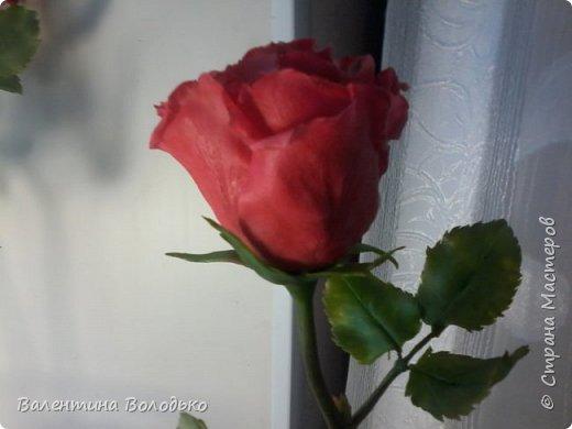 Здравствуйте мастера и мастерицы Страны Мастеров!!!С наступающим Новым годом вас!!Потихоньку осваиваю холодный фарфор.Сегодня у меня красные розы,в тон хозяйке года огненной обезьяны. фото 10