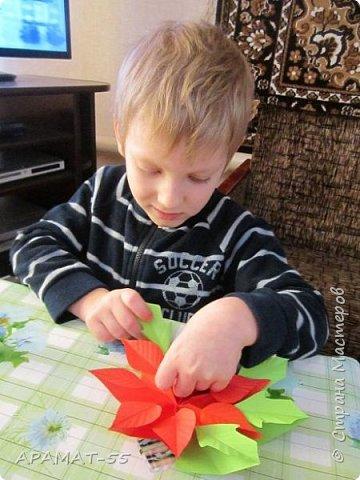 Здравствуйте!!! Вот готова и наша Рождественская звезда. Когда показала этот цветочек Никите, внуку, не было отбоя, нужно было сразу начать делать. Но... делали мы её три дня. Усидчивость не хватает. Старался, пыхтел, делал, конечно с моей помощью, половина работы точно его. Без него ничего не делала, только вместе, поэтому и долго. Довольный!!! фото 11