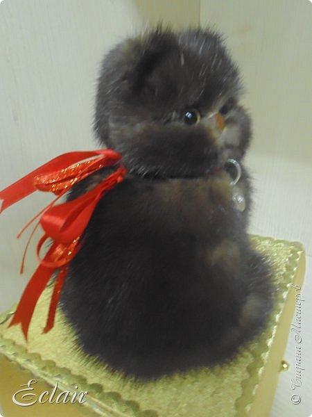 Котенок из меха норки наклеенной на основу из пенопласта.  фото 3