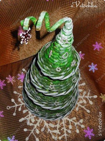 Идейный вдохновитель моей работы - Кристина Шитикова из Донецка.  фото 5