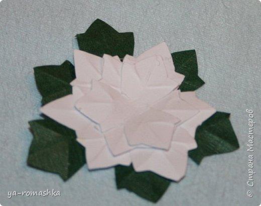 Цветы пуансетии для этой открытки из обычной плотной матовой бумаги для печати.  Я хочу рассказать Вам как это сделать... фото 9