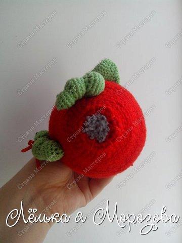 """Не большая предыстория создания этого яблочка: Ммммм,какое красивое яблочко-подумала я,увидев красное яблоко в корзинке с фруктами....но оказывается глаз на это яблоко положила не только я!червяк общил """"моё"""" яблоко.... в общем эта история и сподвигла меня на создание """"вкусного яблочка"""" фото 4"""