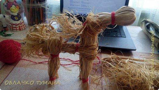 Сегодня будем делать вот такого коня. Для его изготовления нам понадобятся 2 мотка лыка и красные нитки. Солнечный конь - традиционная народная кукла, делалась из ткани, лыка, травы. Кукла могла быть и игровой, и обережной. Конь по славянским традициям – особо почитаемое животное. Незаменимый помощник в быту и верный спутник воина-богатыря, конь представлялся нашим предкам в облике золотого солнца, а пышная, развивающаяся на ветру грива, напоминала солнечные лучи. Солнечный конь у славян - символ плодородия и мощной власти, приносит в дом удачу и счастье, оберегает от злых напастей и лихих людей. фото 11