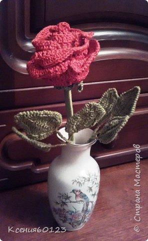 Цветок Роза фото 2
