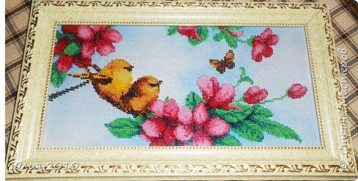 Птички.первая вышивка