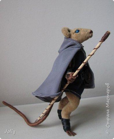 Когда прежний Избавитель погибает - его дар переходит к следующей Настоящей Крысе. Так было всегда.  И никогда потерявший дар Избавитель не оставался в живых. Кроме одного - Ролдо с зеркальной шкурой.  фото 11