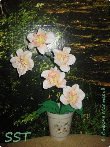 Орхидея из фома фото 2