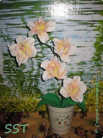 Орхидея из фома фото 1