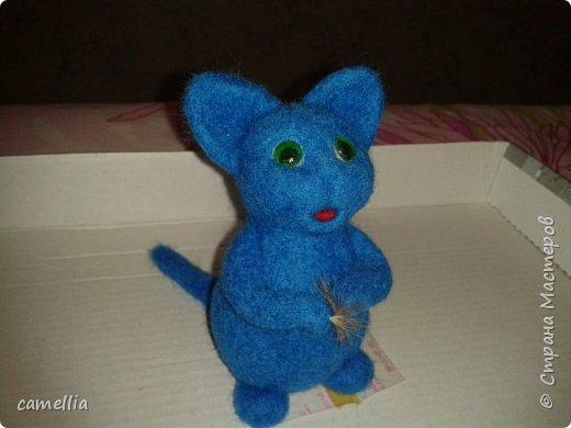 Синий кот фото 2