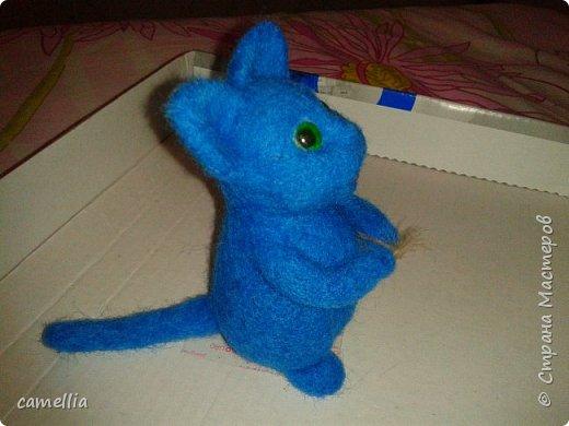 Синий кот фото 4