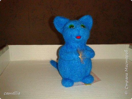 Синий кот фото 3