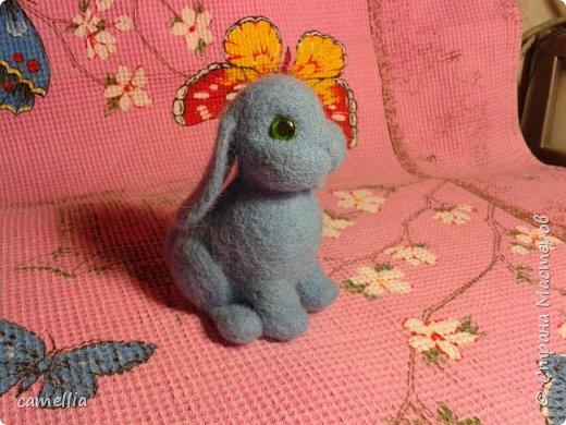 Братцы кролики фото 5