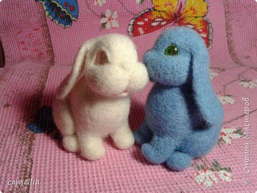 Братцы кролики фото 2
