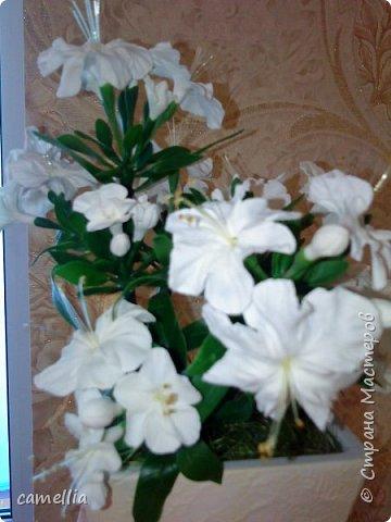 Белая азалия фото 3