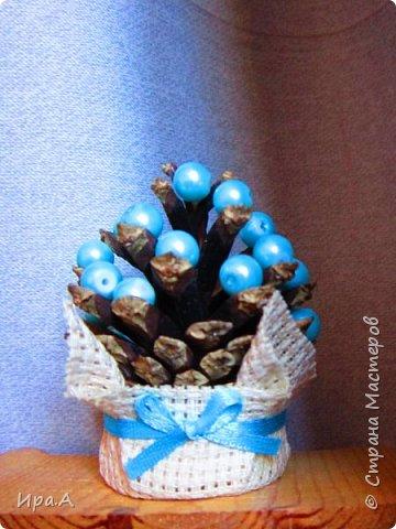 Покажу и свои ёлочки из маленьких сосновых шишек. Подобных елочек было не мало в Стране, но может, мои тоже будут не лишними)) Сделала их на добавочные подарочки учителям детей и друзьям. фото 1