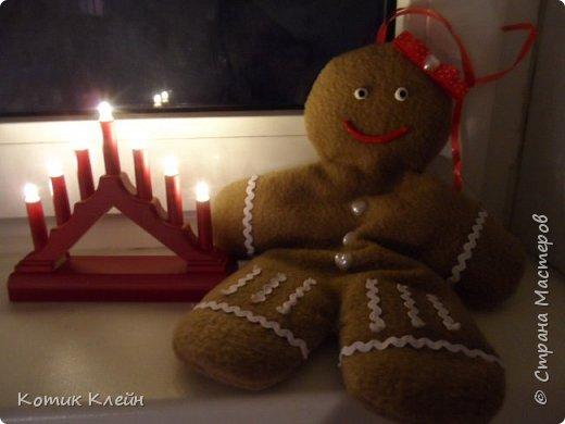Вот такую печенюху подарили мне на новый год. фото 6