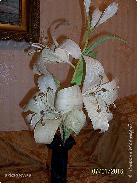 Здравствуйте, Мастера  и Мастерицы!! Поздравляю всех с Рождеством, мира, благополучия, здоровья всем, всем. Вот наконец я сделала одну из своих хотелок. Очень мне нравятся поделки из листьев кукурузы, плетение, цветы, куклы.В этом году заготовила на даче листики и изучив МК сделала цветы.  Лилии будут стоять в моей напольной плетенной вазе, поэтому и размер соответствующий.  Талаш красила пищевыми красителями: розовый, зеленый, и натуральный цвет.  Листики закручивала утюгом и  щипцами для волос. фото 6