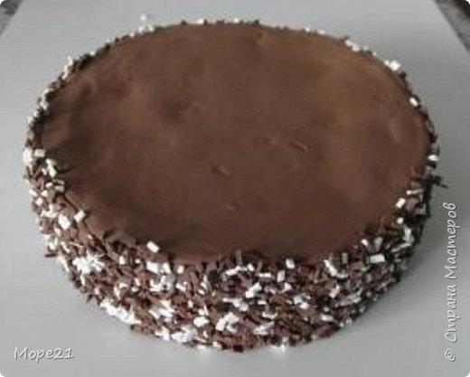 Представляю пошаговый материал с описанием изготовления праздничного торта из полимерного пластилина (массы для лепки), который является одним из самых популярных товаров для детского творчества. Торт – это не обычное лакомство, а воплощение кулинарного таланта кондитеров.  Мой мастер-класс рассчитан на тех, кто любит лепить из пластилина, а также изучать и придумывать рецепты вкусных блюд.   фото 15