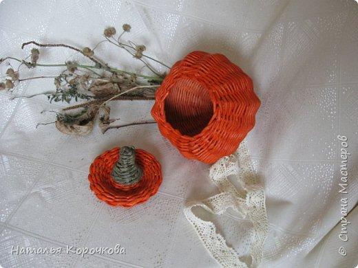Приветствую всех, кто заглянул ко мне в гости! Нравятся мне тыквы, они настроение создают оранжевое. Сплела себе и любуюсь теперь. фото 3