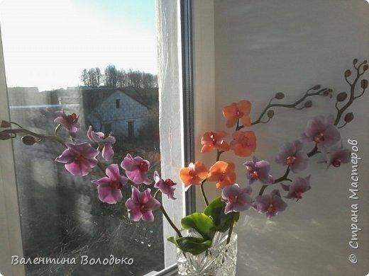 Здравствуйте мастера и мастерицы Страны Мастеров.Сегодня у меня расцвели орхидейки с холодного фарфора. фото 6