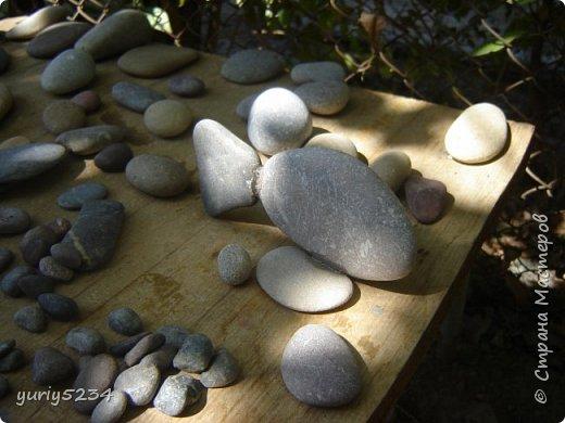 Всем привет! Подсмотрел в инете идею разукраски камней, решил попробовать -а почему бы и нет?! Камни есть, краска тоже. Вперед! фото 1