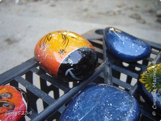 Всем привет! Подсмотрел в инете идею разукраски камней, решил попробовать -а почему бы и нет?! Камни есть, краска тоже. Вперед! фото 9