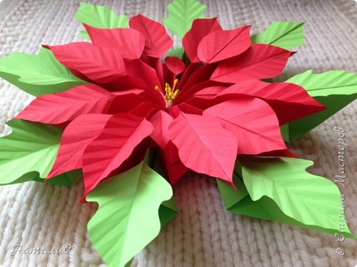 Здравствуйте, все-все-все!!! Поздравляю вас с Новым Годом и Рождеством! Желаю счастья, любви, взаимопонимания и мира! И, конечно же, радости творчества! Увидев МК Татьяны Николаевны , я, как и многие из нас, была просто поражена этой красотой! Сразу решила сделать пуансеттию - рождественскую звезду, она действительно восхитительна!  Приглашаю вас посмотреть, что у меня получилось! фото 5
