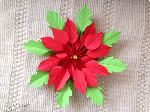 Здравствуйте, все-все-все!!! Поздравляю вас с Новым Годом и Рождеством! Желаю счастья, любви, взаимопонимания и мира! И, конечно же, радости творчества! Увидев МК Татьяны Николаевны , я, как и многие из нас, была просто поражена этой красотой! Сразу решила сделать пуансеттию - рождественскую звезду, она действительно восхитительна!  Приглашаю вас посмотреть, что у меня получилось! фото 7