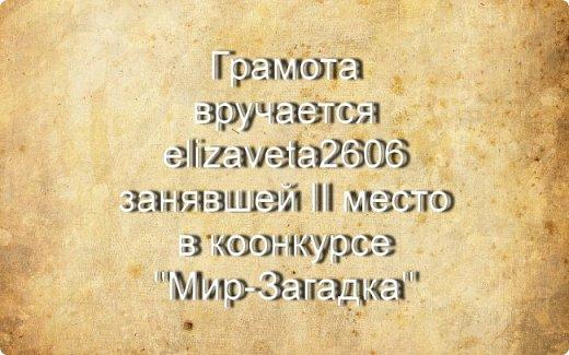 "Итоги конкурса ""Мир-Загадка"" фото 6"