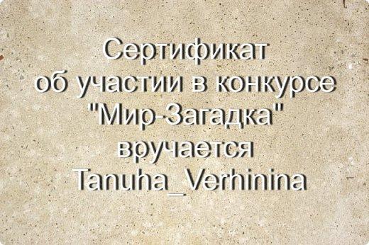 "Итоги конкурса ""Мир-Загадка"" фото 11"