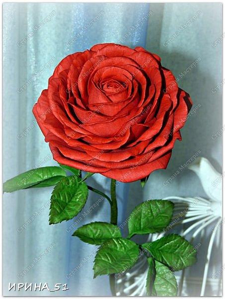 Здравствуйте! Сегодня я к Вам с новым Мк. Простая роза с тонировкой сухой пастелью. Мастер-класс. Автор Ирина_51 (вы можете найти меня  в контакте по имени  Ирина Сашина) фото 50