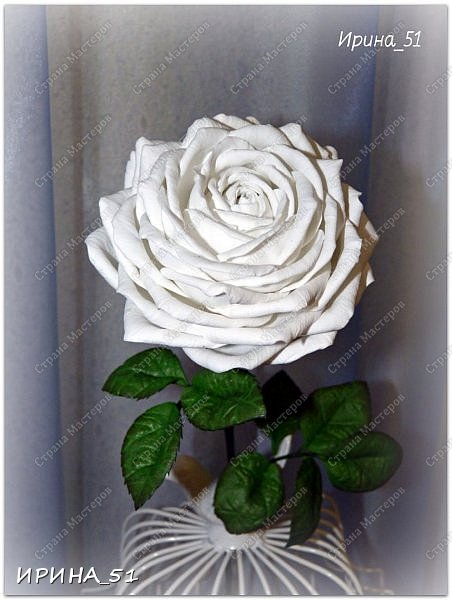 Здравствуйте! Сегодня я к Вам с новым Мк. Простая роза с тонировкой сухой пастелью. Мастер-класс. Автор Ирина_51 (вы можете найти меня  в контакте по имени  Ирина Сашина) фото 48