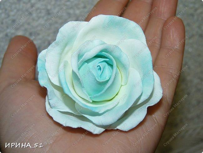 Здравствуйте! Сегодня я к Вам с новым Мк. Простая роза с тонировкой сухой пастелью. Мастер-класс. Автор Ирина_51 (вы можете найти меня  в контакте по имени  Ирина Сашина) фото 51