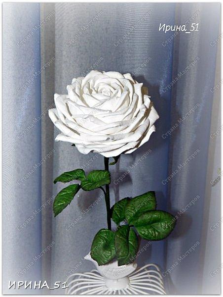 Здравствуйте! Сегодня я к Вам с новым Мк. Простая роза с тонировкой сухой пастелью. Мастер-класс. Автор Ирина_51 (вы можете найти меня  в контакте по имени  Ирина Сашина) фото 47