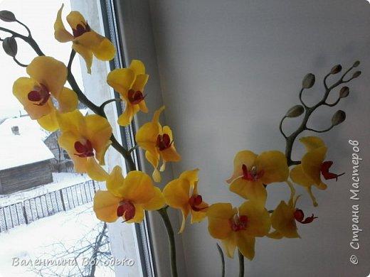 """Здравствуйте дорогие жители Страны Мастеров!!!Дочка заказала орхидейку т.к. живые у нее не растут,а ей как она говорит""""хочется быть хозяйкой"""", вот представляю ее вашему вниманию. фото 4"""