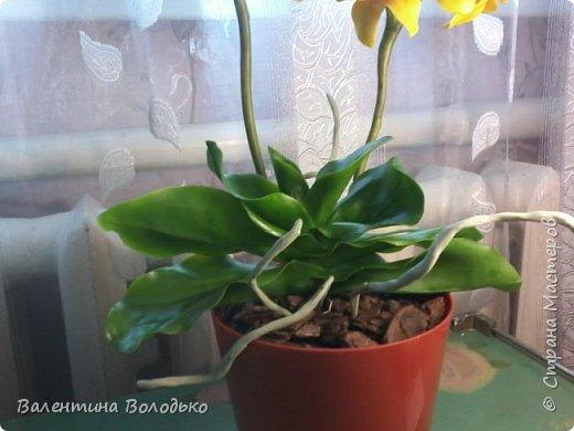 """Здравствуйте дорогие жители Страны Мастеров!!!Дочка заказала орхидейку т.к. живые у нее не растут,а ей как она говорит""""хочется быть хозяйкой"""", вот представляю ее вашему вниманию. фото 5"""