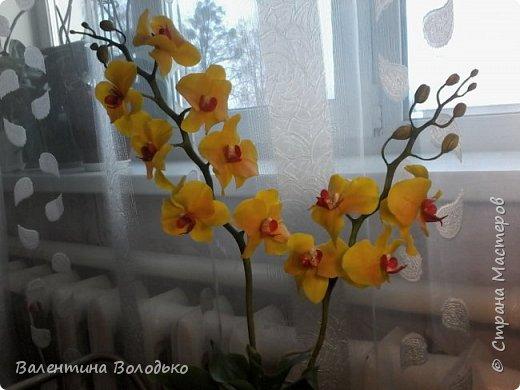 """Здравствуйте дорогие жители Страны Мастеров!!!Дочка заказала орхидейку т.к. живые у нее не растут,а ей как она говорит""""хочется быть хозяйкой"""", вот представляю ее вашему вниманию. фото 11"""