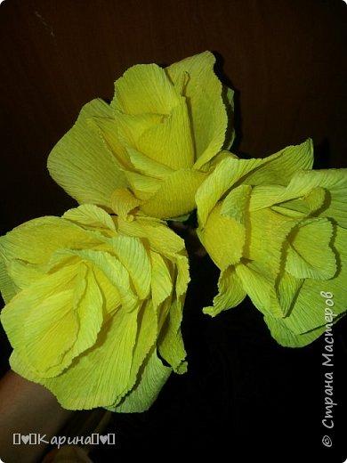 """Здравствуй СМ! Наконец-то я нашла время для тебя! Сделала я для конкурса """"Мои любимые цветы"""" желтые розы. (Для конкурса) Мое имя Карина, мне 14 лет (Скоро день рождения(для меня)). У Мамы довно лежала эта бумага, хотела давно зделать, но получилось только сейчас.  фото 2"""